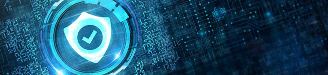 What are Data Security Solutions and How do They Work?