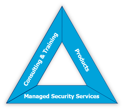 Cyber Security Triangle