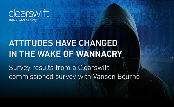 WannaCry Survey Infographic