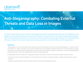 Anti-Steganography: Combating External Threats and Data Loss